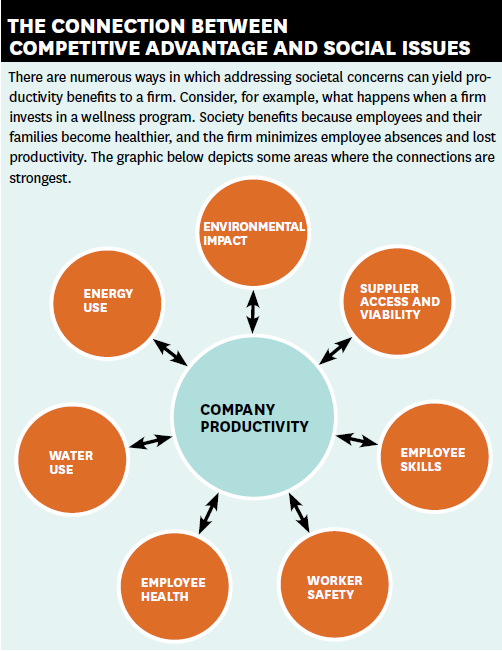 sustainability issue of companies